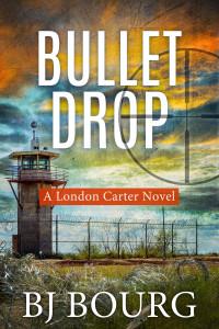 Bullet Drop Cover